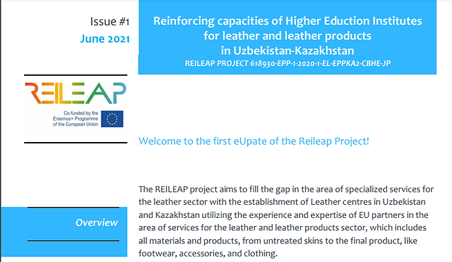The 1st newsletter for the REILEAP Project has been issued
