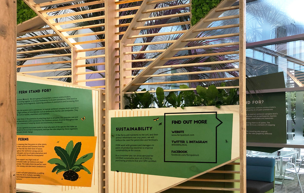 #fernpalmoil installation
