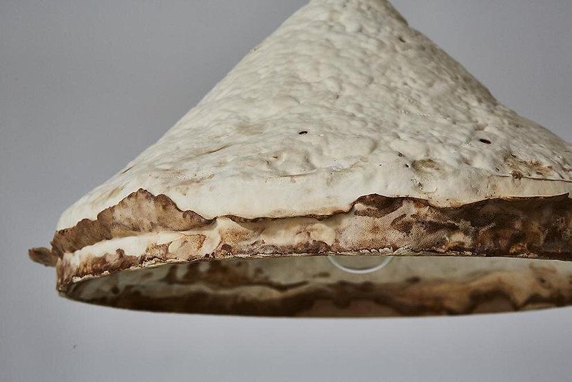 COMPOSTABLE PENDANDT: Mushroom mycelium