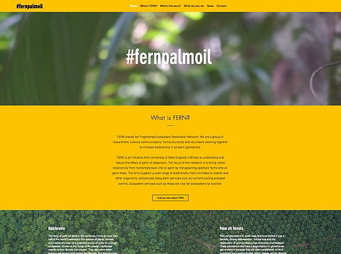 Fern Palm Oil Website