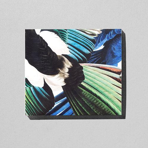 Zu Jeder Stund En Vogelgsang – CD