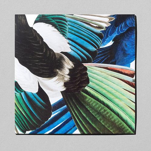 Zu Jeder Stund En Vogelgsang – Vinyl