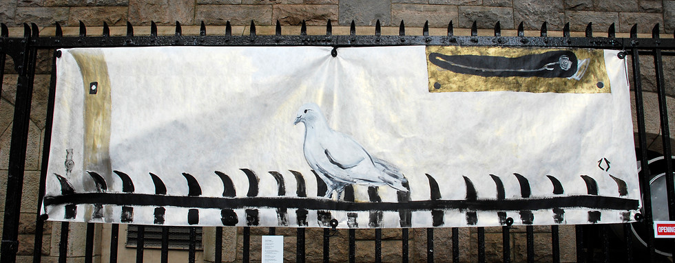 """""""Pigeon on the Fence """" - Zach Seeger"""