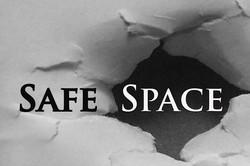 safeWebLogo