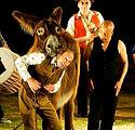Donkey's Circus.jpg