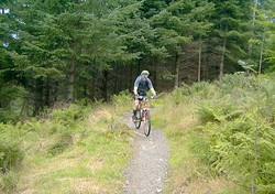 Glenlivet estate cycling trails