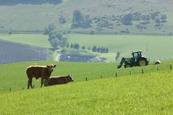 Glenlivet agriculture