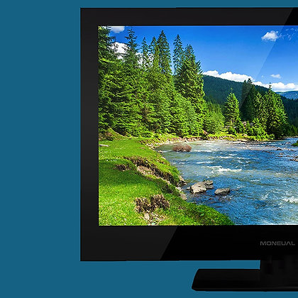MONEUAL TV COMPATIBLE MONITOR TEL01
