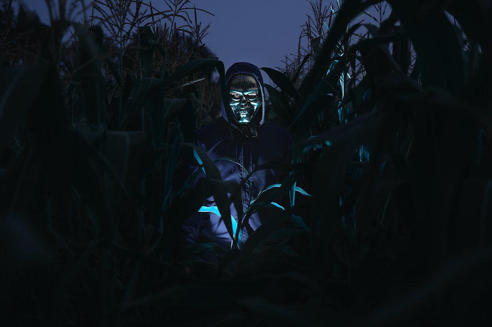 Haunted Corn Maze at Eureka Fear Farm -