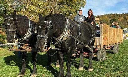 Horse-drawn hayride at Brookdale Farms