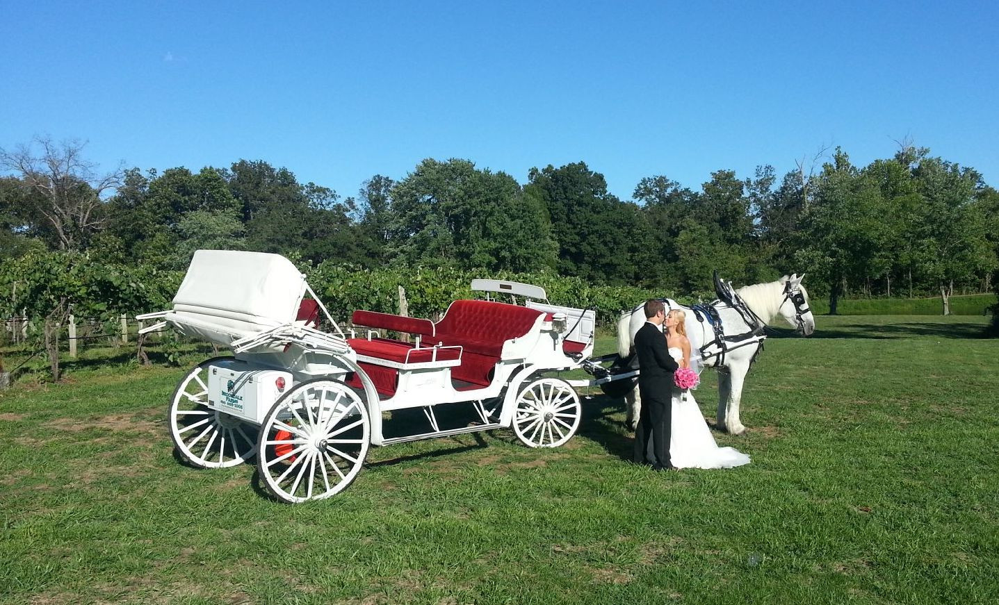 Limo Style Carriage at Brookdale Farms.j
