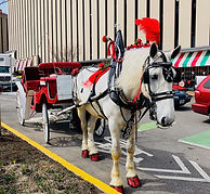 Brookdale Carriage Services at Laclede Landings in St. Louis