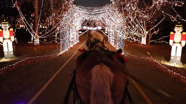 Celebration of Lights Carriage Rides: Daily 11/26-12/30