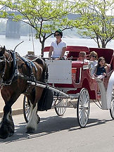 family riding carriage with river in background