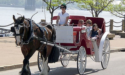 family enjoying Brookdale Carriage ride at St. Louis Riverfront