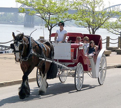 Brookdale Farms horse drawn carriage at St. Louis River Front