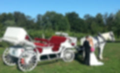 Beautiful bride and Groom in front of Brookdale Farms Carriage