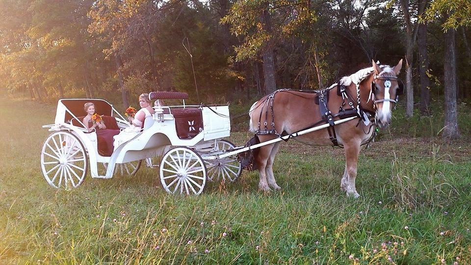 Weddings at Brookdale Farms