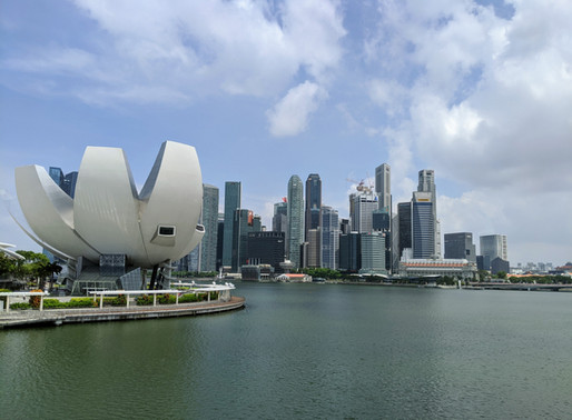 5 different entity types in Singapore and what they mean