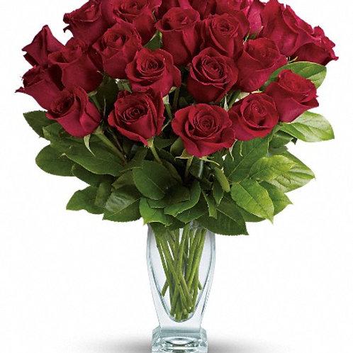 Rose Classique