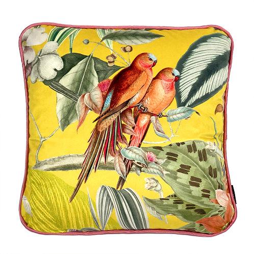 Polštář Antillas Parrot