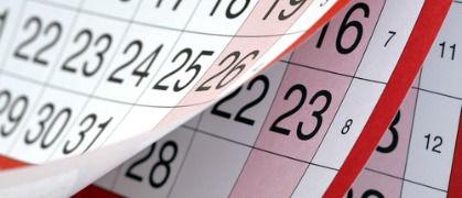 Cheeki Monkeys Events Calendar
