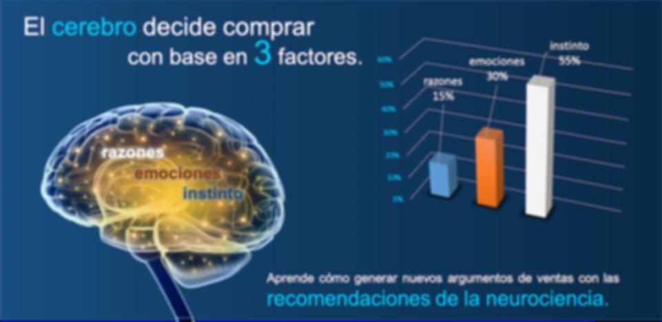 Decision cerebral (br).png