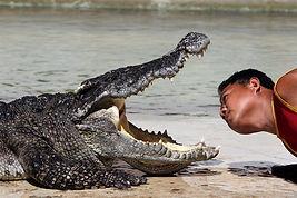 Crocodile Zoo near Suvarnabhumi Airport