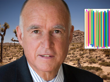 California Agrees to Build Border Wall out of Straws