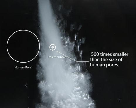 human-pore_orig.jpg