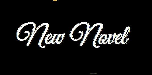 New Novel.png