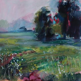Meadow Lands