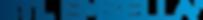 BTL_Emsella_Roundedpositivegradienttoman