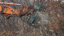 AKM TREE MULCHER (79)