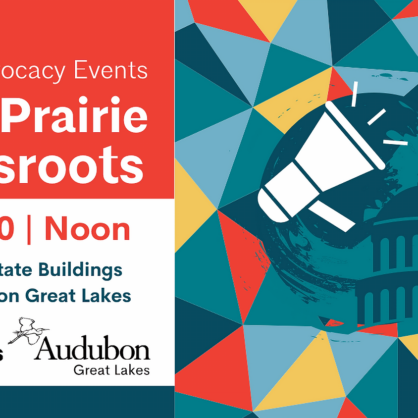 Prairie Grassroots: Bird-Safe State Buildings with Audubon Great Lakes