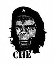 Chimpan-che
