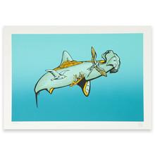 El tiburón martillo