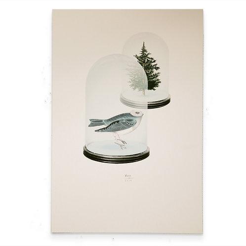 Árbol-Pájaro