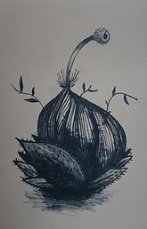 Rafflesia I