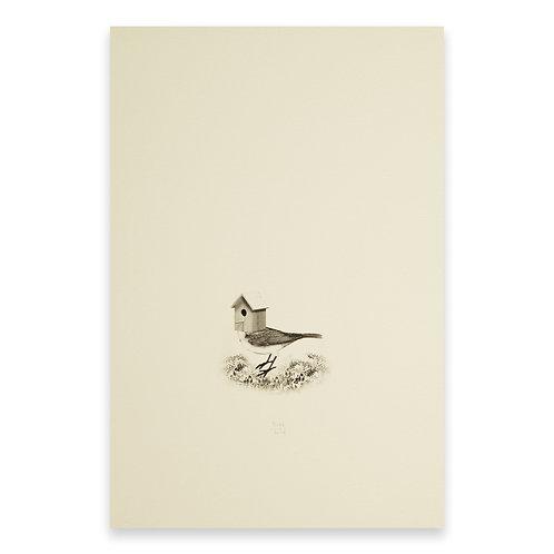 Casa-pájaro