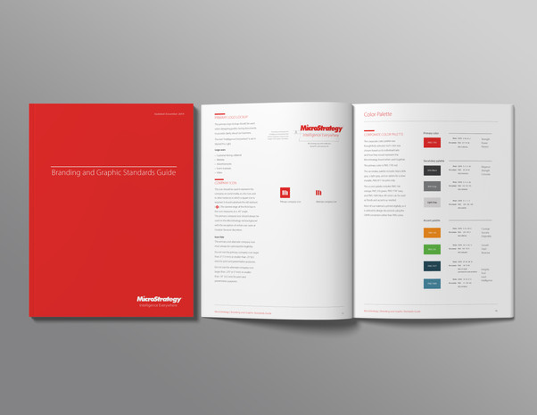 MicroStrategy Corporate Guidelines