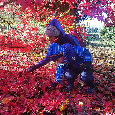 Remeberance Sunday Early years craft Red leaf collecting