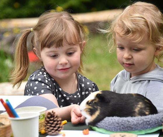 The World Outside Kindergarten Outdoor n