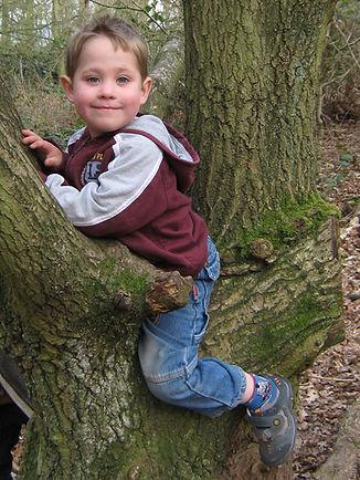 220309 Jack in Tree Mothering Sunday Kin