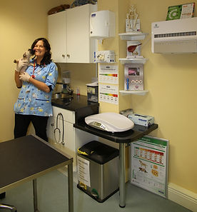 Newcastlewest Pet Vet Clinic Mary B Barrett MVB