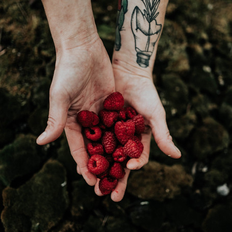 Recent feature on Humans Who Grow Food