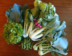 Check out this amazing CSA share from _b
