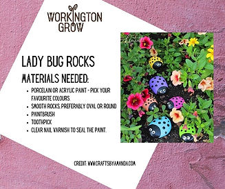 WGROW Craft Materials - Lady Bug Rocks (
