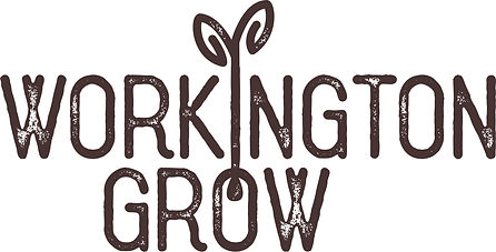 WorkingtonGrowFORPRINT.jpg