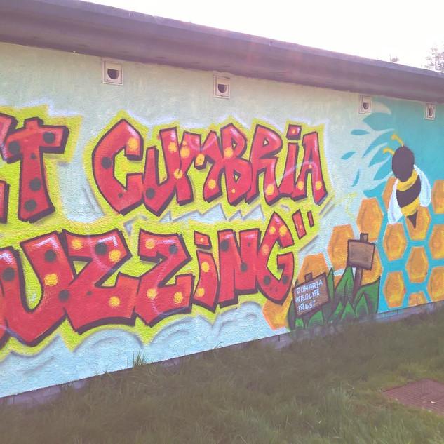Get Cumbria Buzzing Graffiti